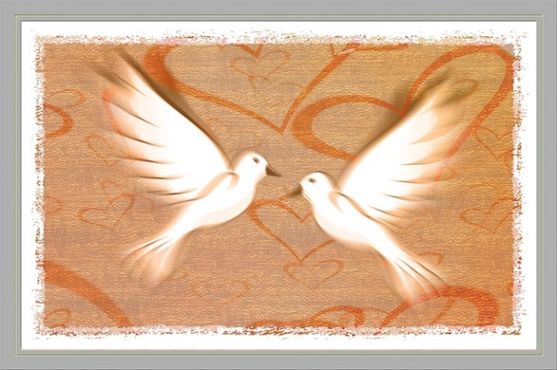 peace-dove-588990_640