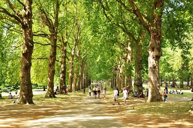 green-park-2932220_640
